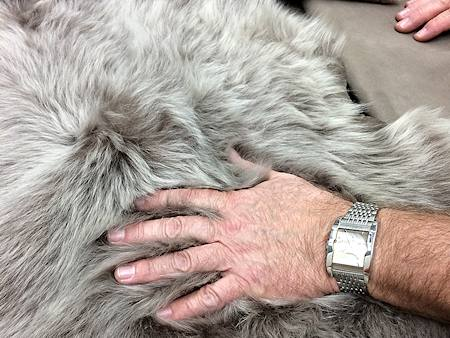 Kauper Pelz und Lammfell Fashion Schesslitz - Qualitätsprüfung